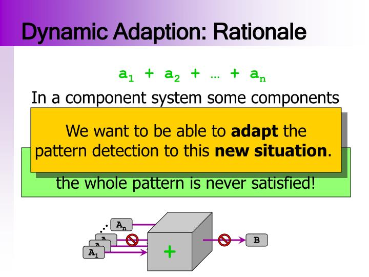 Dynamic Adaption: Rationale