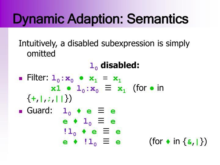 Dynamic Adaption: Semantics