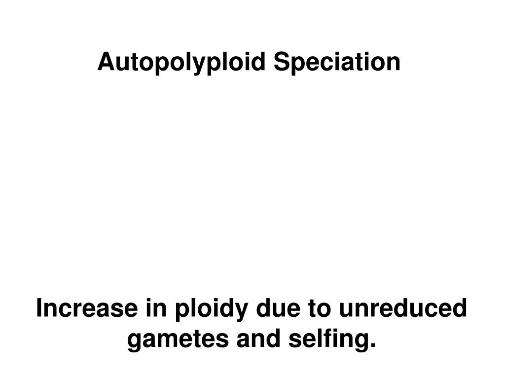 Autopolyploid Speciation