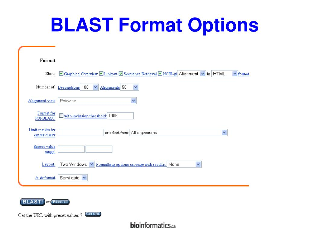 BLAST Format Options