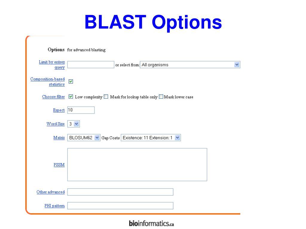 BLAST Options