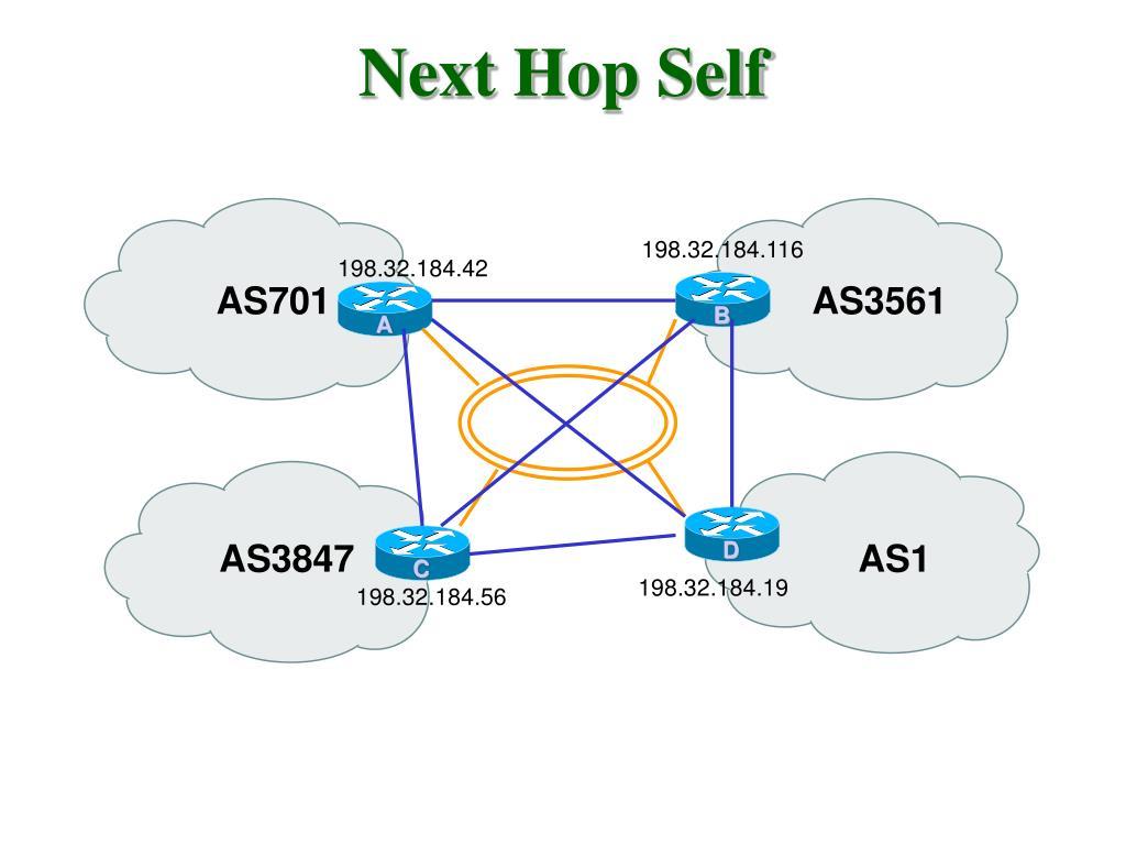 Next Hop Self