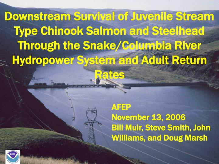 Downstream Survival of Juvenile Stream Type Chinook Salmon and Steelhead Through the Snake/Columbia ...