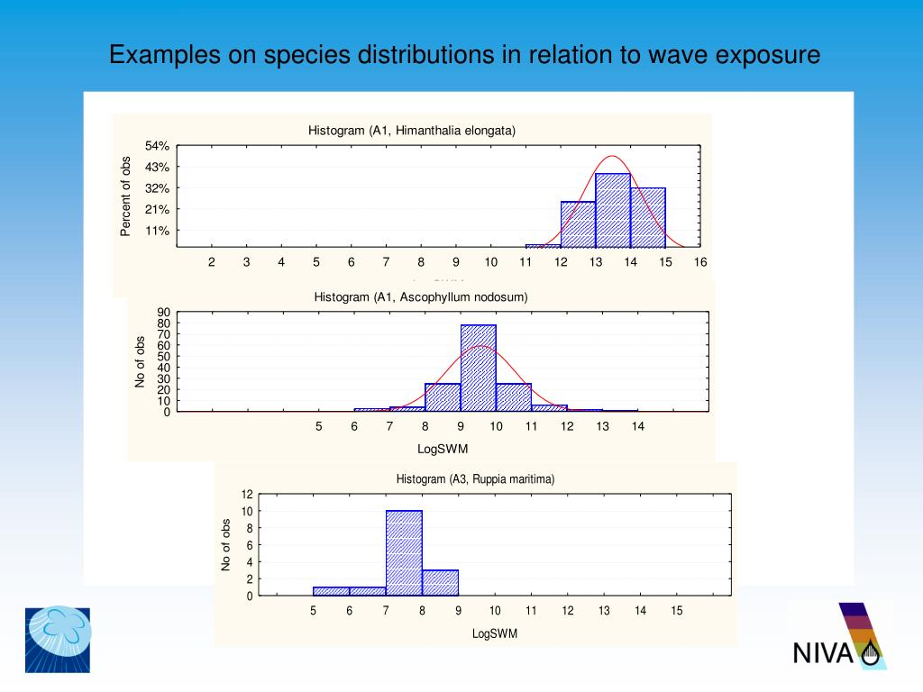 Examples on species distributions in relation to wave exposure