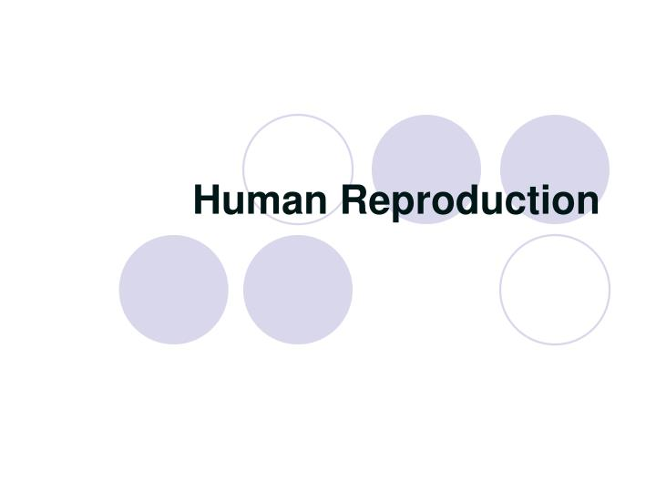 Human reproduction l.jpg