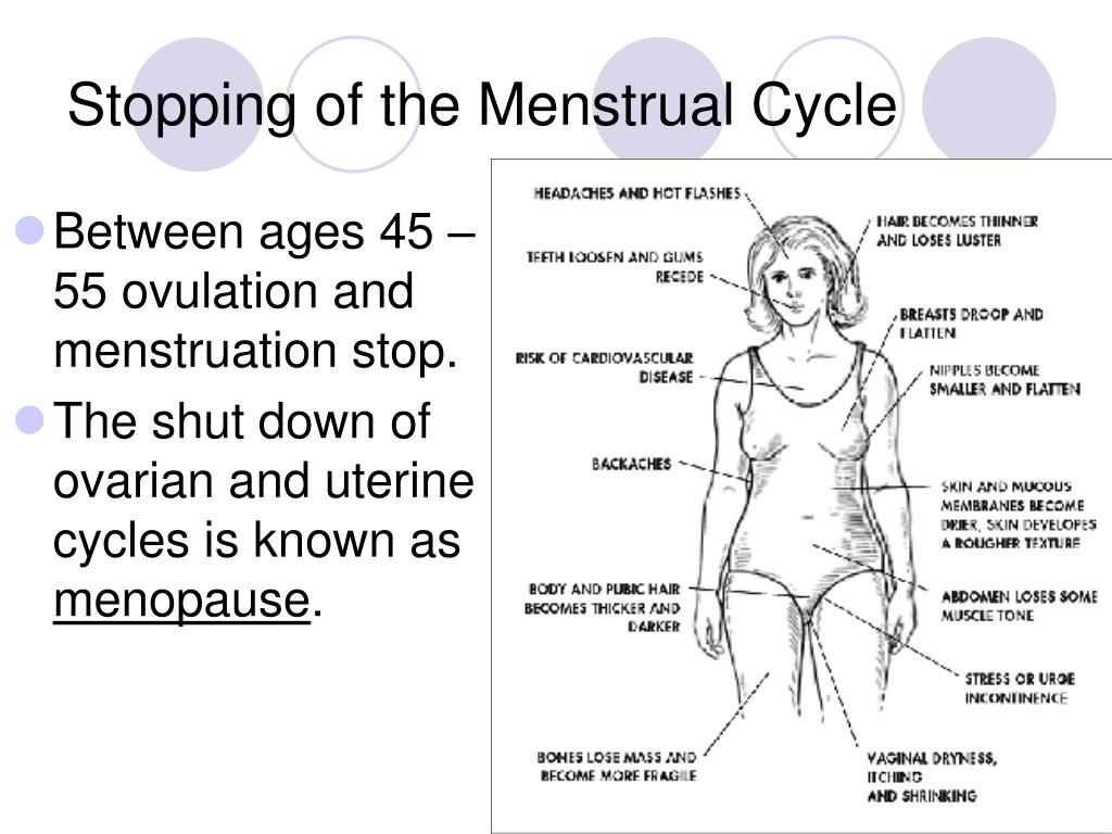 Stopping of the Menstrual Cycle