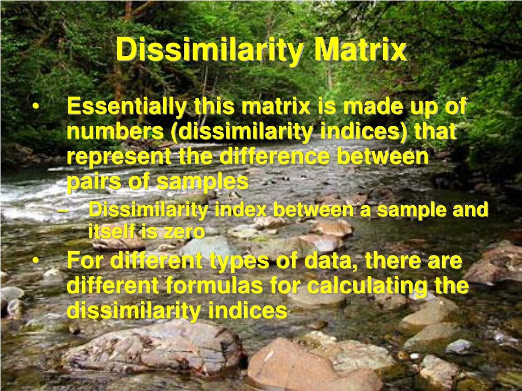Dissimilarity Matrix
