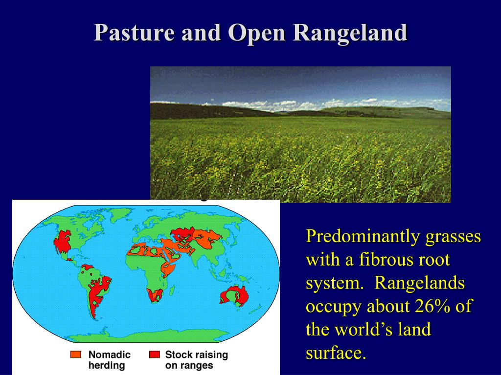 Pasture and Open Rangeland