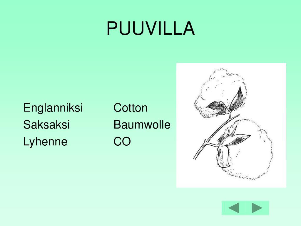 PUUVILLA