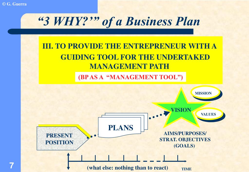 """3 WHY?'"" of a Business Plan"