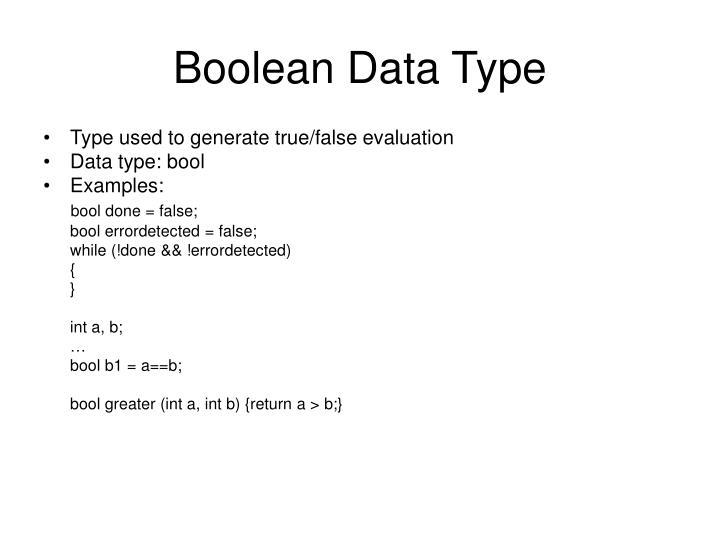 Boolean Data Type