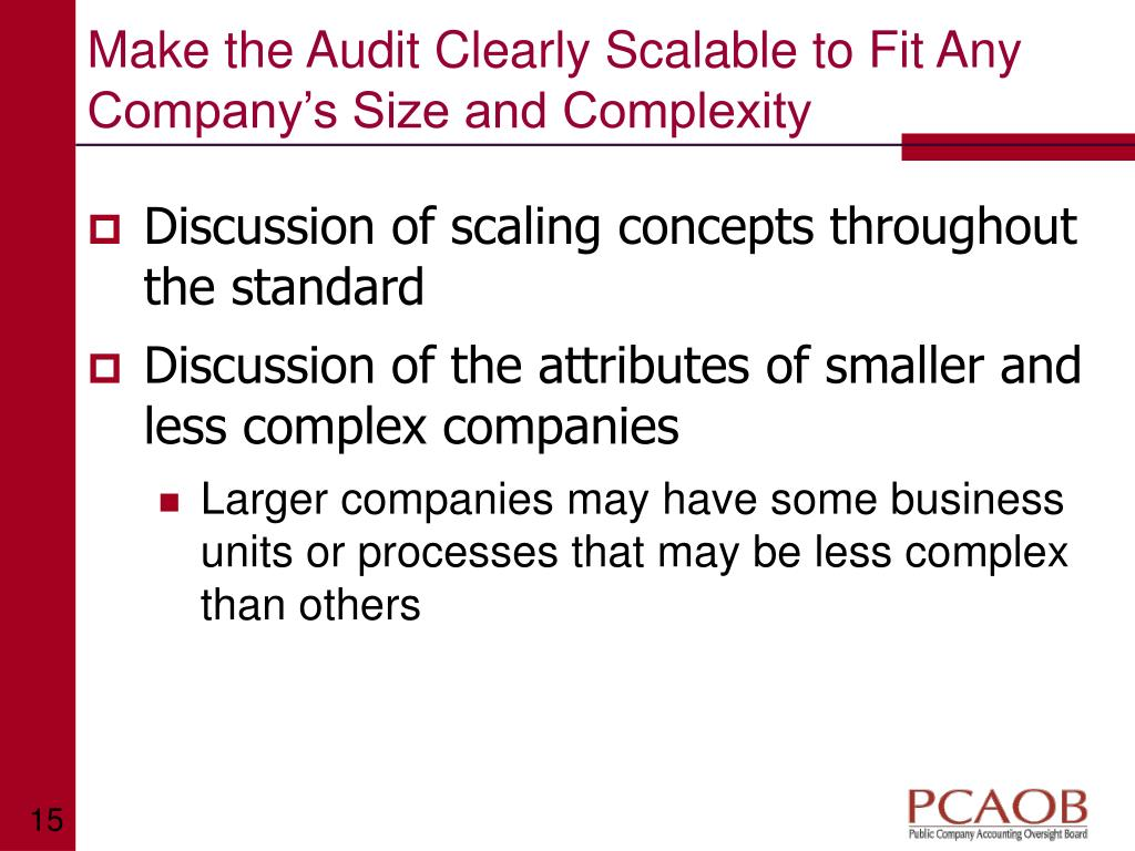 Make the Audit Clearly Scalable to Fit Any Company's Size and Complexity