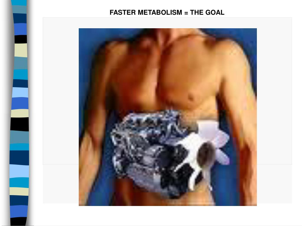 FASTER METABOLISM = THE GOAL