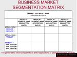 business market segmentation matrix