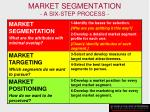 market segmentation a six step process