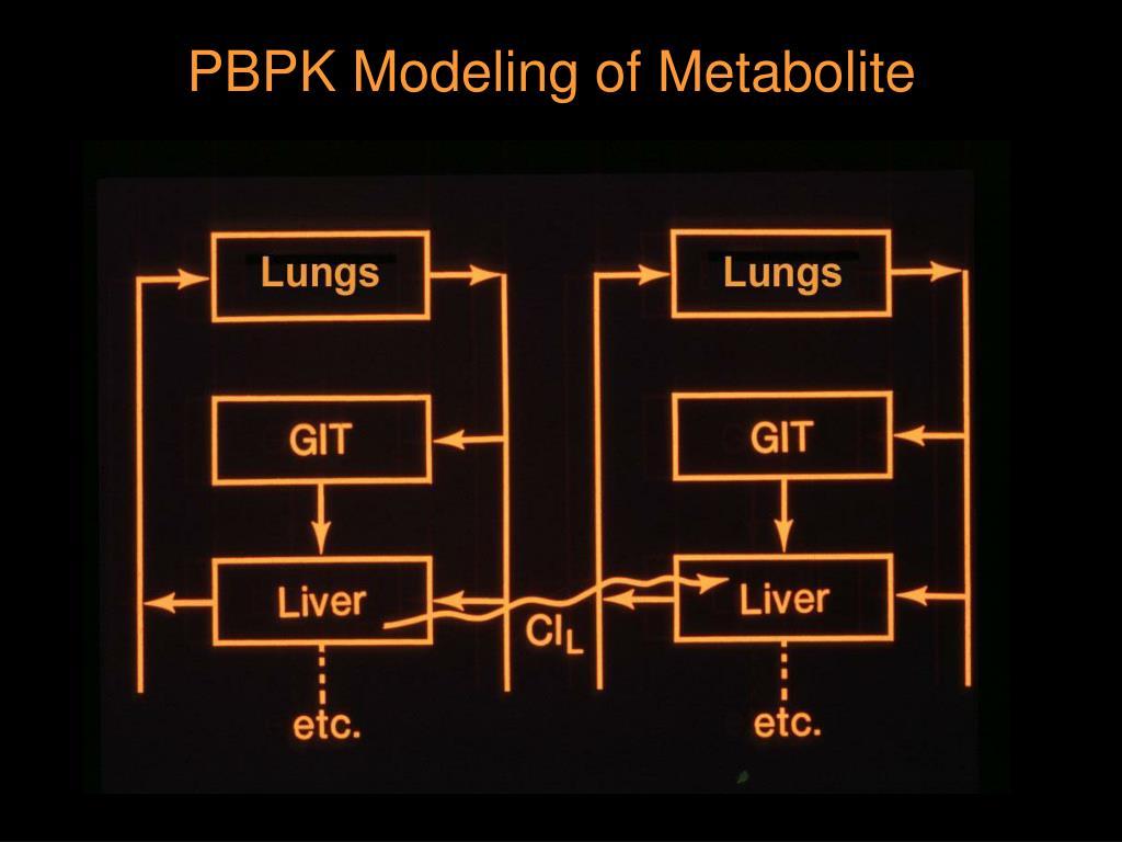 PBPK Modeling of Metabolite