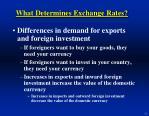 what determines exchange rates12
