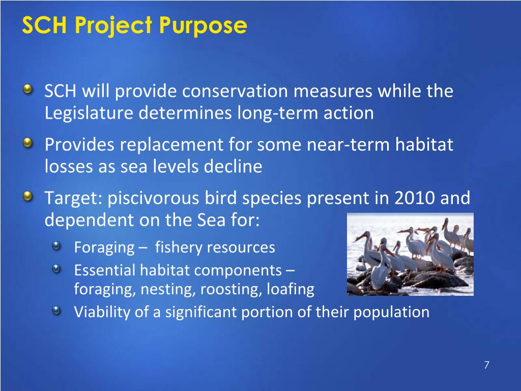 SCH Project Purpose