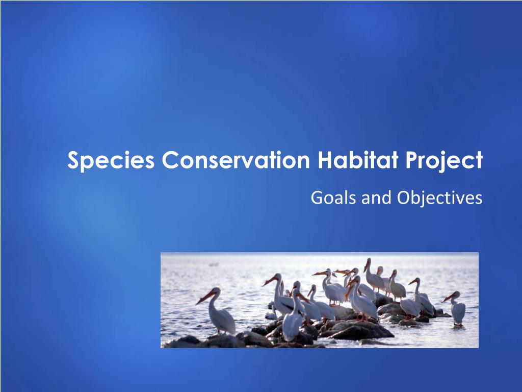 Species Conservation Habitat Project