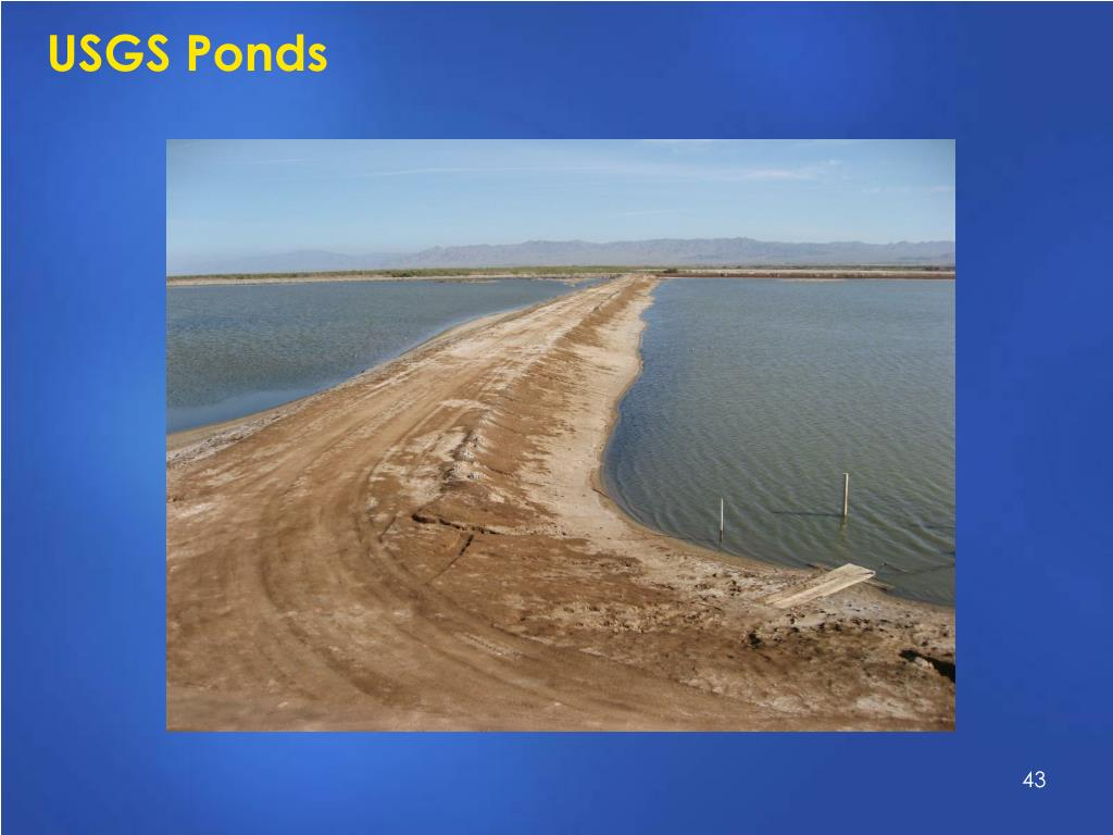 USGS Ponds