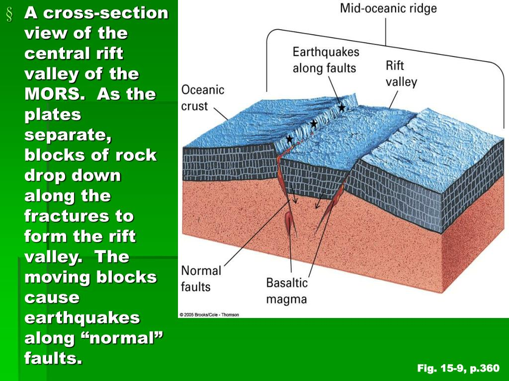 "A cross-section view of the central rift valley of the MORS.  As the plates separate, blocks of rock drop down along the fractures to form the rift valley.  The moving blocks cause earthquakes along ""normal"" faults."