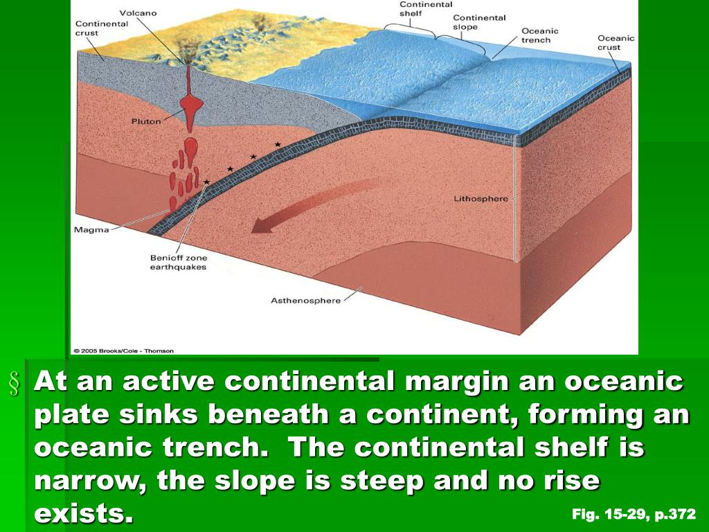 At an active continental margin an oceanic plate sinks beneath a continent, forming an oceanic trench.  The continental shelf is narrow, the slope is steep and no rise exists.