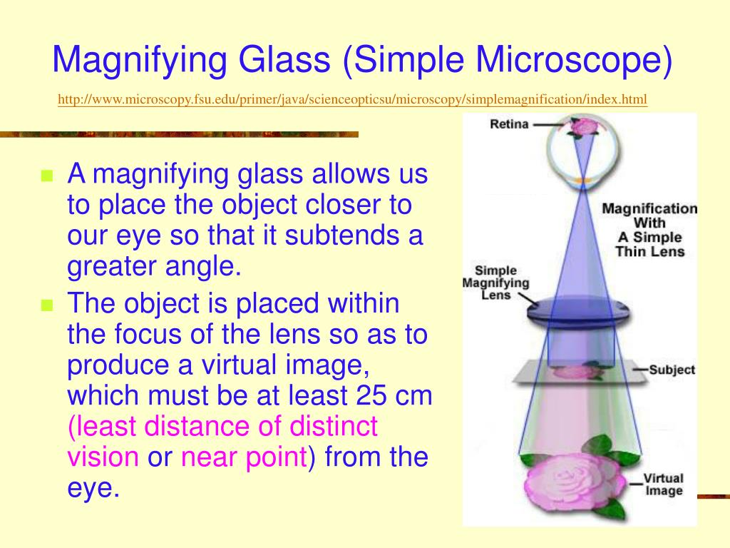 Magnifying Glass (Simple Microscope)