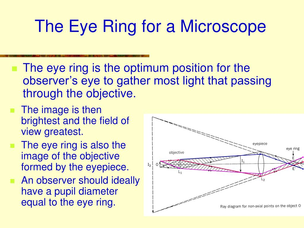 The Eye Ring for a Microscope