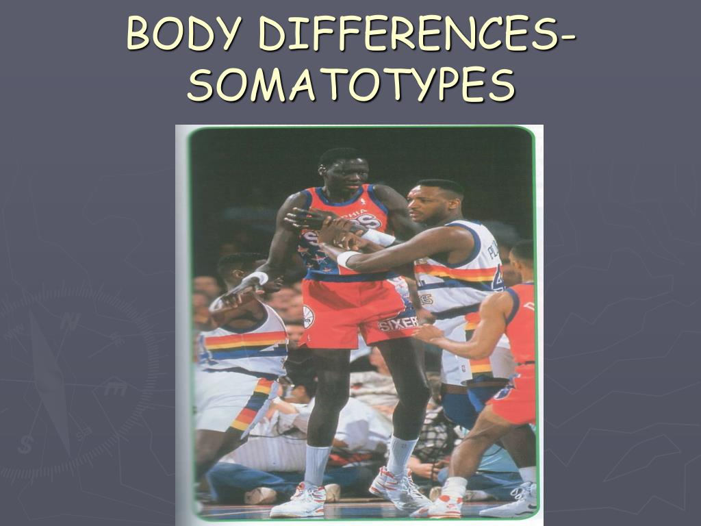 body differences somatotypes
