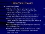 protozoan diseases29