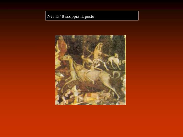Nel 1348 scoppia la peste