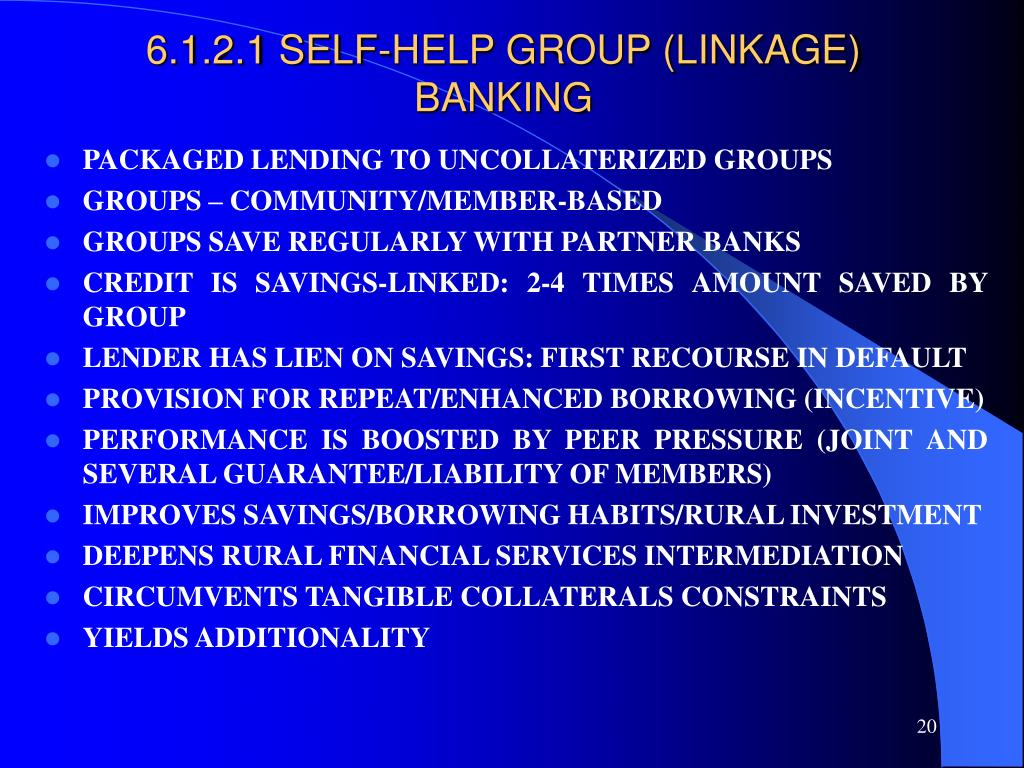 6.1.2.1 SELF-HELP GROUP (LINKAGE) BANKING
