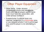 other player equipment