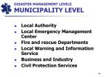 disaster management levels municipality level