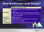 what are domain local groups