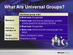 what are universal groups
