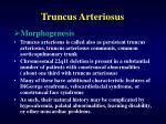 truncus arteriosus4