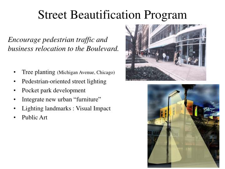Street Beautification Program