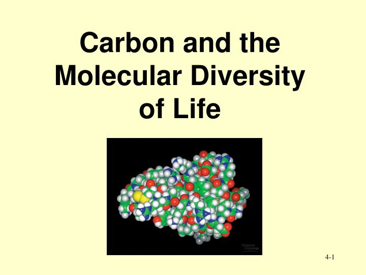 Carbon and the molecular diversity of life l.jpg