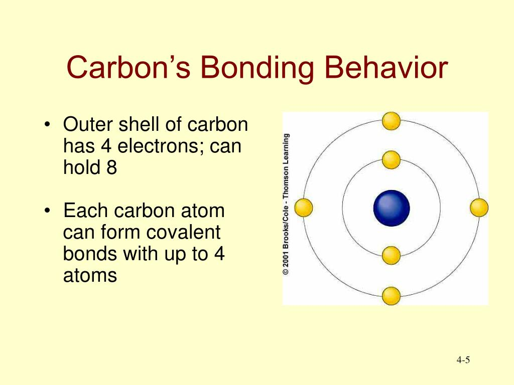 Carbon's Bonding Behavior