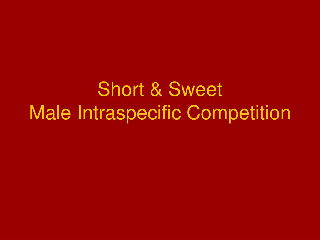 short sweet male intraspecific competition