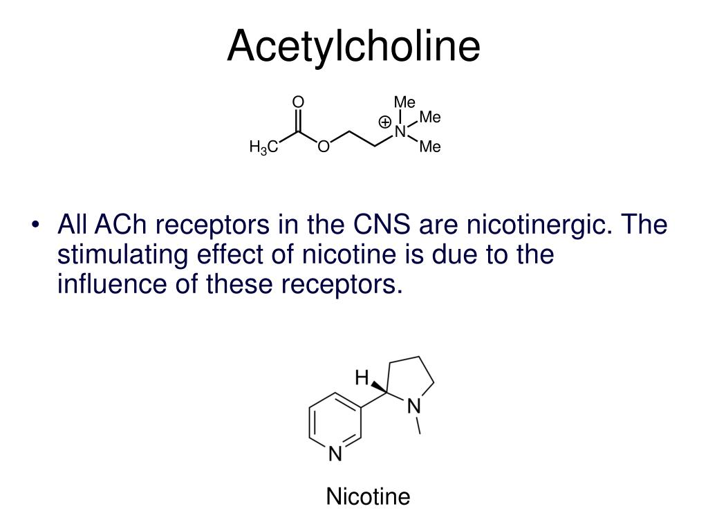 Acetylcholine