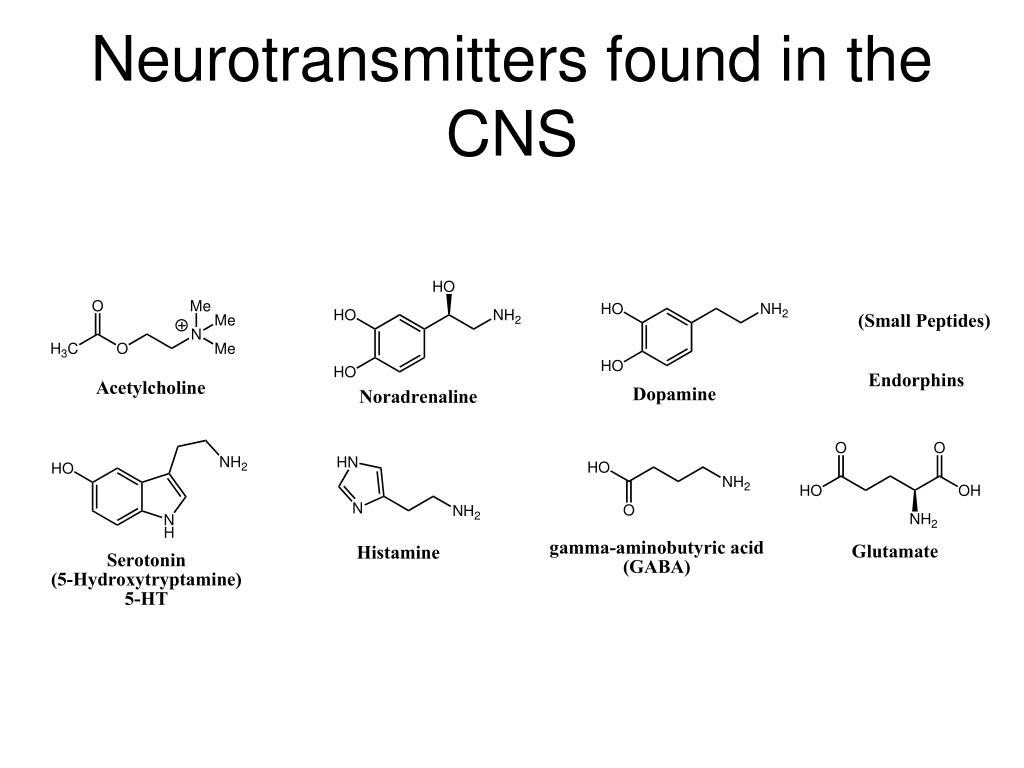 Neurotransmitters found in the CNS