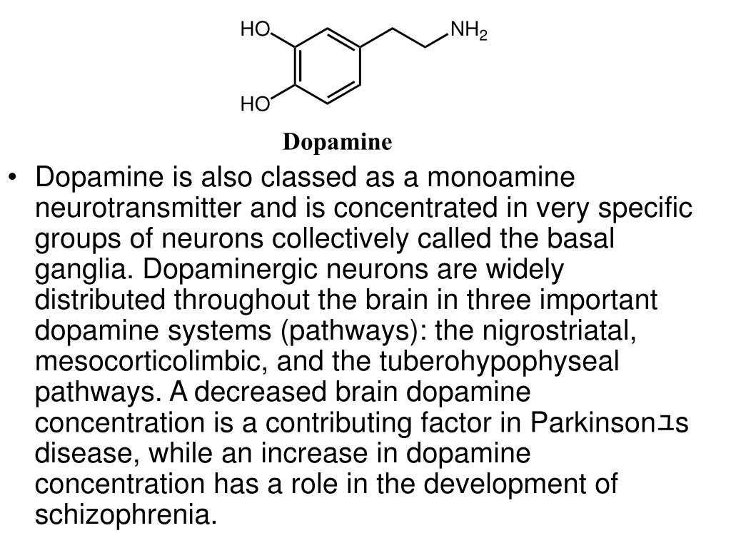 Dopamine is also classed as a monoamine neurotransmitter and is concentrated in very specific groups of neurons collectively called the basal ganglia. Dopaminergic neurons are widely distributed throughout the brain in three important dopamine systems (pathways): the nigrostriatal, mesocorticolimbic, and the tuberohypophyseal pathways. A decreased brain dopamine concentration is a contributing factor in Parkinson