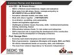 common themes and impressions