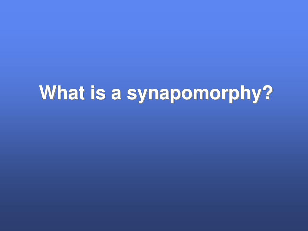 What is a synapomorphy?