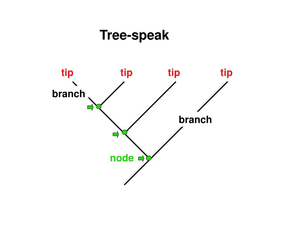 Tree-speak