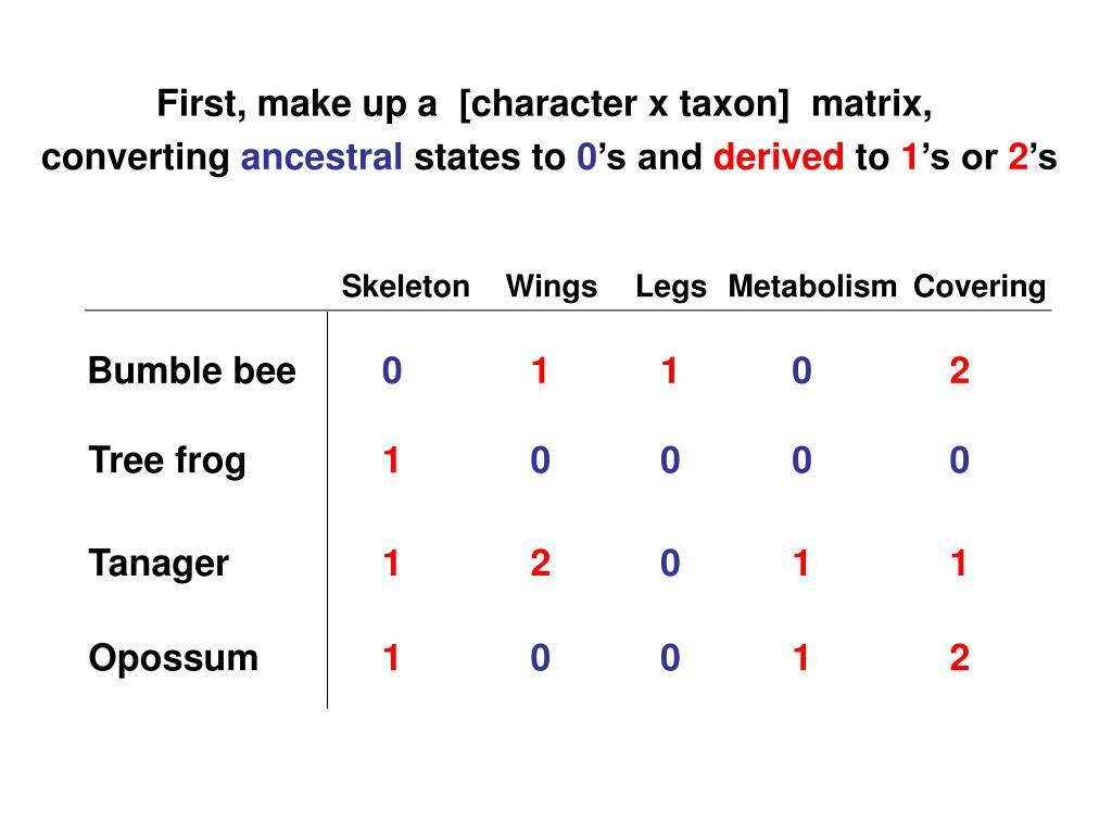 First, make up a  [character x taxon]  matrix,