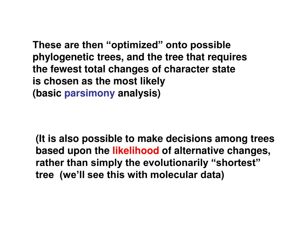 """These are then """"optimized"""" onto possible"""