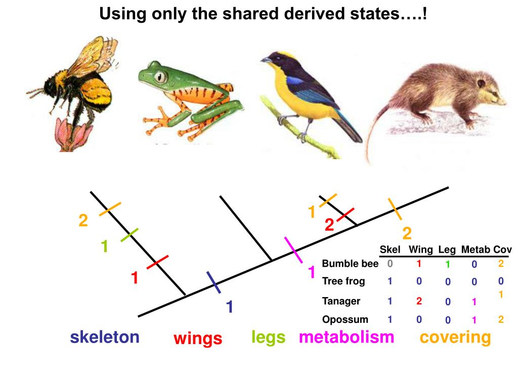 Using only the shared derived states….!